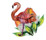 Cute Little Princess Abstract Background with Pink Flamingo Illustration. FLOWER Stock Images