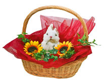 Cute little rabbit in basket. With flowers Royalty Free Stock Photos