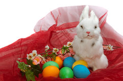 Cute little rabbit in basket. With flowers Stock Photography