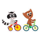 Cute little raccoon and bear characters riding bicycles together Royalty Free Stock Photo