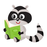 Cute little raccoon student character reading an interesting book Stock Photography