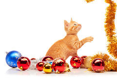 Cute little red kitten playing with golden tinsel near colorful and sparkly Christmas toys Royalty Free Stock Photos