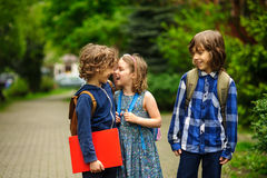 Cute little school students briskly talk on the schoolyard. Stock Images
