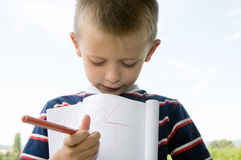 Cute little schoolboy Royalty Free Stock Image
