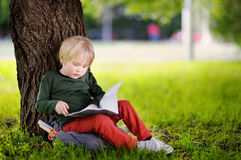 Cute little schoolboy sitting under tree and studying . Back to school concept. Cute little schoolboy sitting under tree and studying. Young student doing his Stock Photo