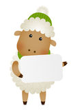 Cute little sheep Stock Images
