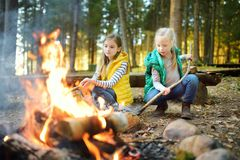 Cute little sisters roasting hotdogs on sticks at bonfire. Children having fun at camp fire. Camping with kids in fall forest. stock images