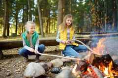 Cute little sisters roasting hotdogs on sticks at bonfire. Children having fun at camp fire. Camping with kids in fall forest. stock photography
