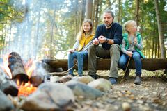 Cute little sisters and their father roasting marshmallows on sticks at bonfire. Children having fun at camp fire. Camping with ki stock images