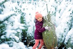 Cute little smiling kid girl on christmas tree market. Cute little smiling kid girl shopping on christmas tree market. Happy child in winter clothes holding and royalty free stock image