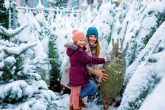 Cute little smiling kid girl and mother on christmas tree market. Happy child, daughter and young women in winter clothes choosing xmas tree on xmas market royalty free stock image