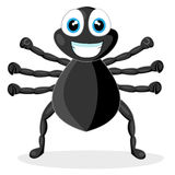 Cute Little Spider Stock Photos