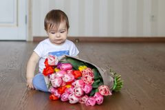 Cute little thoughtful baby boy sitting near the bunch of tulips royalty free stock images