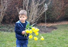 Cute little thoughtful boy in blue vest holding bouquet of bright yellow daffodils flowers staying in spring park. Or garden waiting for date. Bringing flowers royalty free stock images
