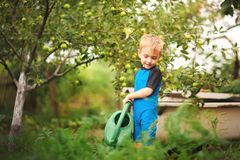 Free Cute Little Toddler Boy Watering Plants With Watering Can In The Garden. Adorable Little Child Helping Parents To Grow Vegetables Royalty Free Stock Photo - 160456505