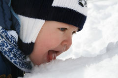 Cute little toddler eating snow Royalty Free Stock Image