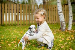 A cute little toddler girl giving a hug to her dog,Dalmatian puppy, fall season in a garden,lawn with autumn leaves in stock photography