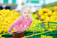 Cute little toddler girl shopping in a food store Stock Image