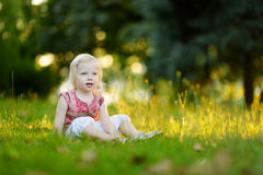 Cute little toddler girl sitting on the grass Royalty Free Stock Image