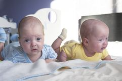 Cute little twins babies boy and girl are lying on the bed and learning to hold their heads. Cute little twins babies boy and girl are lying on the bed and royalty free stock photo