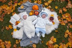 Cute little twins royalty free stock image