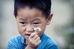 Cute little Vietnamese boy Royalty Free Stock Photos