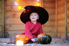 Cute little wizard with jack-o-lanterns halloween decorations Royalty Free Stock Photo
