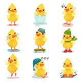 Cute little yellow duck chick characters set, duckling in different poses and situations cartoon vector Illustrations Royalty Free Stock Images