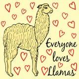 Cute llama or alpaca illustration Stock Image