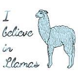Cute llama or alpaca illustration Royalty Free Stock Photography