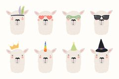 Cute llamas set vector illustration