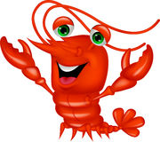 Cute lobster cartoon presenting Stock Image