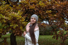 Cute long-haired Russian girl. In autumn Stock Image