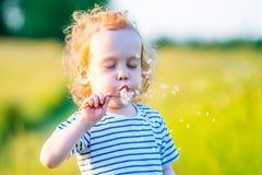 Cute long hair boy toddler in a meadow blowing dandelion