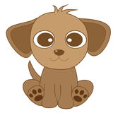 Cute looking brown dog with big eyes and big ears Royalty Free Stock Photos