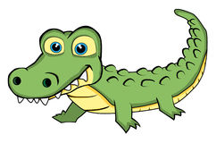 Cute Looking Crocodile Stock Image