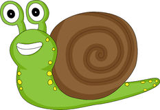 A Cute Looking Snail Royalty Free Stock Photography