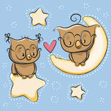 Cute Lovers Owl Royalty Free Stock Images