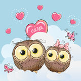 Cute Lovers Owls Stock Photography