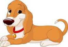 Cute lying dog Royalty Free Stock Image