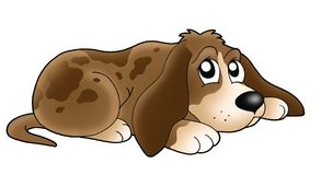 Cute lying dog. Color illustration Stock Photos
