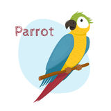 Cute macaw, ara parrot sitting on branch, tropical, exotic bird. Cute macaw, ara parrot sitting on tree branch, tropical, exotic bird, cartoon vector Royalty Free Stock Image