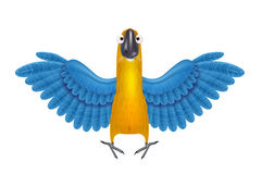 Cute macaw or parrot cartoon Stock Images