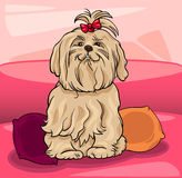 Cute maltese dog cartoon illustration Stock Images