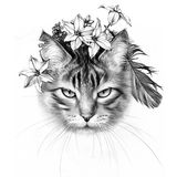 March Cat. Spring Flowers. Cute March Cat. Pencil Drawing. Spring Flowers stock images