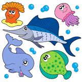 Cute Marine Animals Collection 2 Stock Photos
