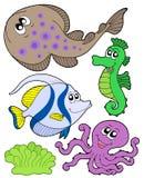 Cute marine animals collection 3 vector illustration