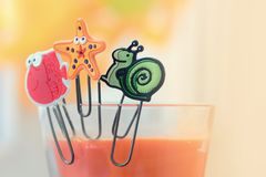 Cute fasteners on a glass. Cute marine fasteners still life stock image