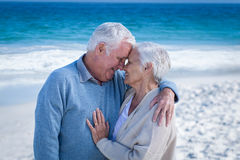 Cute mature couple cuddling Stock Photos