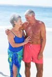 Cute mature couple embracing on the beach Stock Image